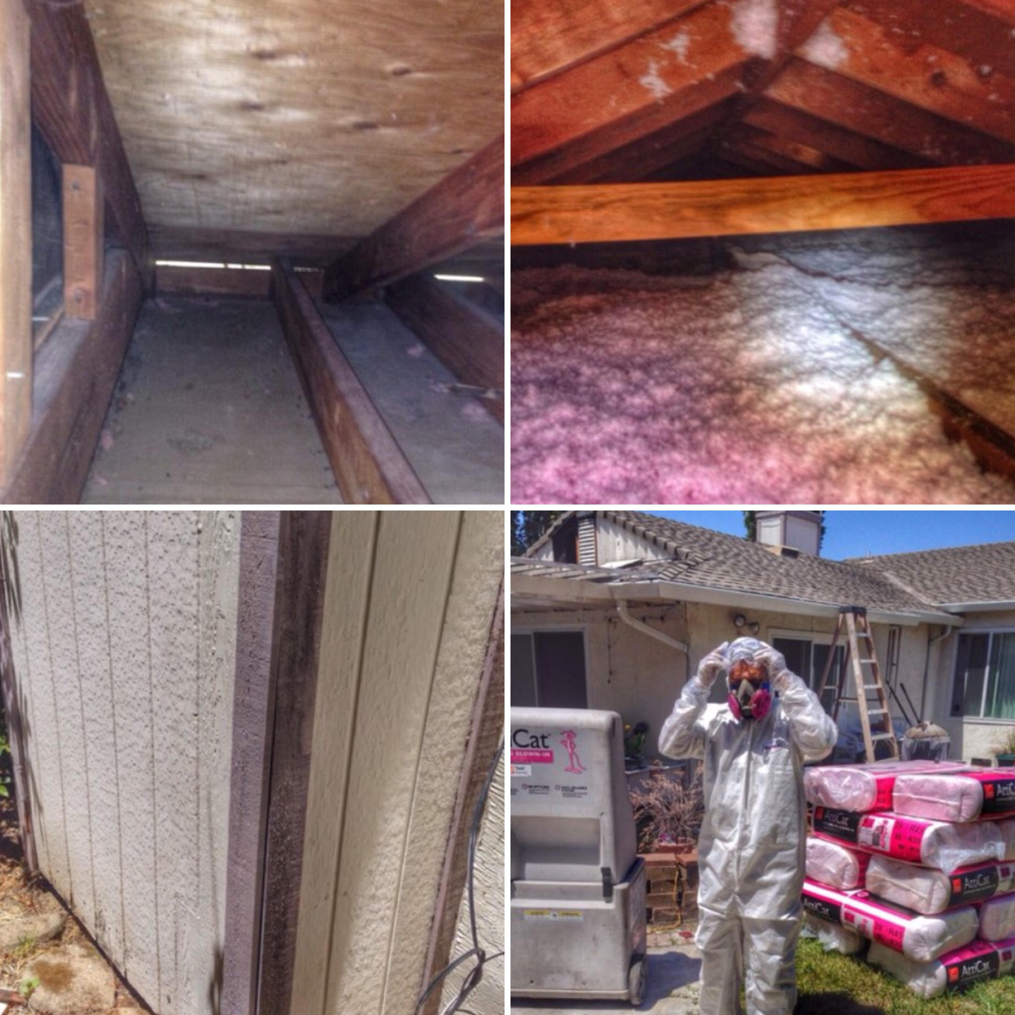 Attic Crawlspace Cleanup Wildlife Cleanup