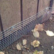 wildlife trench control prevention barrier